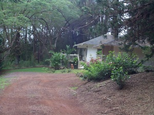 Sally's cottage on Lanai.  This really was country living.  Aside from Lani, the only visitors were deer and wild turkeys.