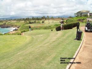 On the Kauai Lagoons Course - Mark Edward Harris