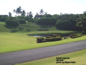 Kauai Lagoons Golf Club - 8th hole with the ball devouring lake.