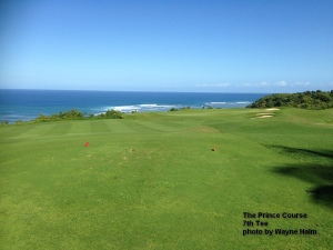 The 7th Tee - Danny and I got to laughing at our shots and I forgot to take the picture - This is theview from the red tees.