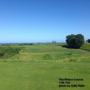 The 11th Tee