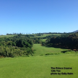 The 12th Tee