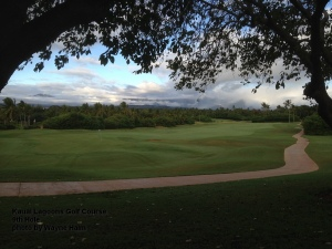 Kauai Lagoons Golf Course 9th Hole