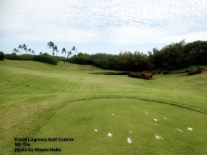 Kauai Lagoons Golf course 8th tee
