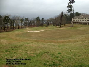2015-03-10--#02--Cypress Bend - Uphill Hole.jpg