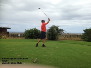 And that is about as 'through' as I can go – Comments about my swing will be appreciated.