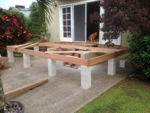 You might notice that I caved in and built temporary steps for my dogs.