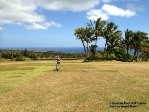 View from the Kukuiolono Park Golf Course on Kauai.