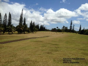 The 1st fairway at the Kukuiolono Park Golf Course on Kauai