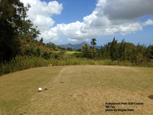 The 6th tee at the Kukuiolono Park Golf Course on Kauai.