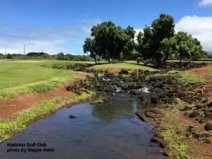 Matt on the Kiahuna Golf Club on Kauai