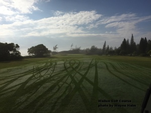 However, the grass was still wet when we played the first fairway.
