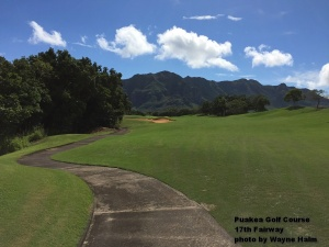 The 17th hole with the Haupu Range in the background.