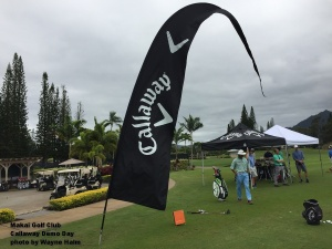 2017-02-09-17-golf-at-makai-callaway-sign
